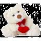Any Message Teddy Bears